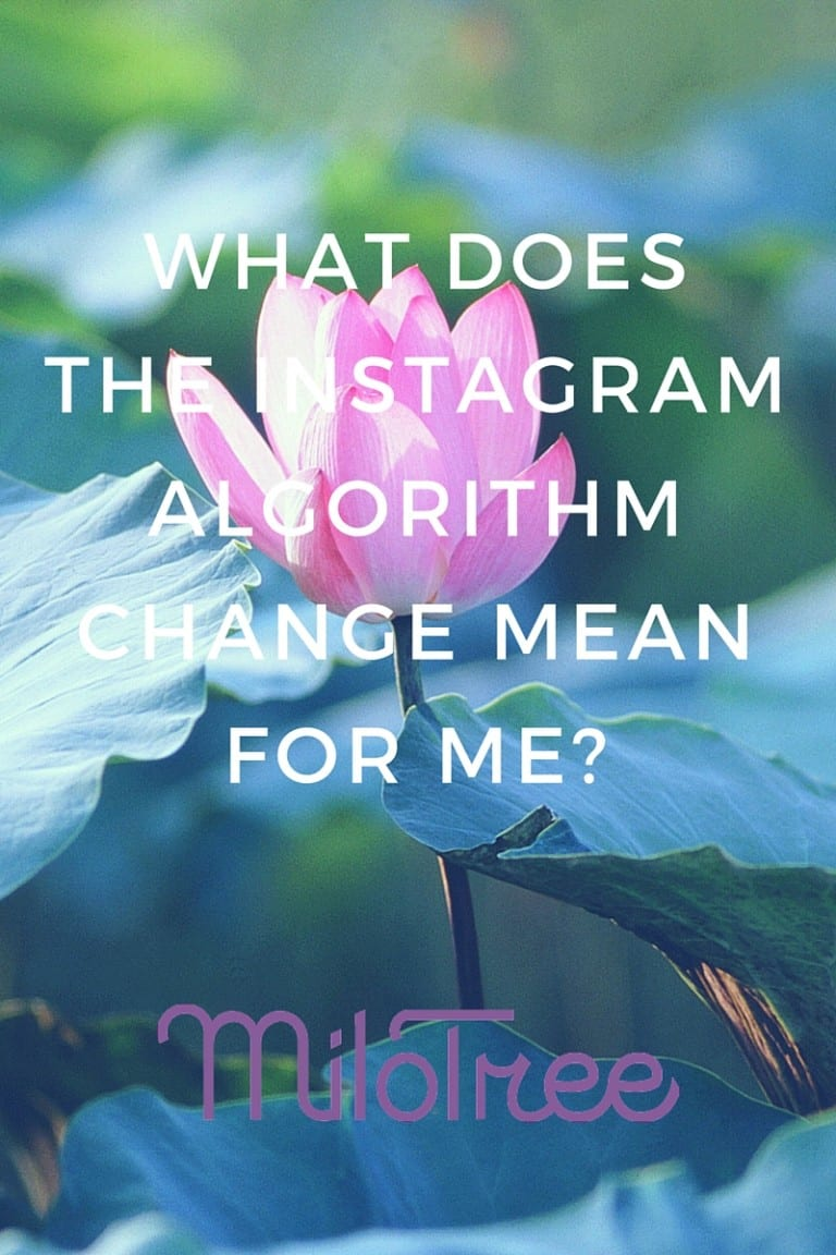 What Does the Instagram AlgorIthm Change Mean?