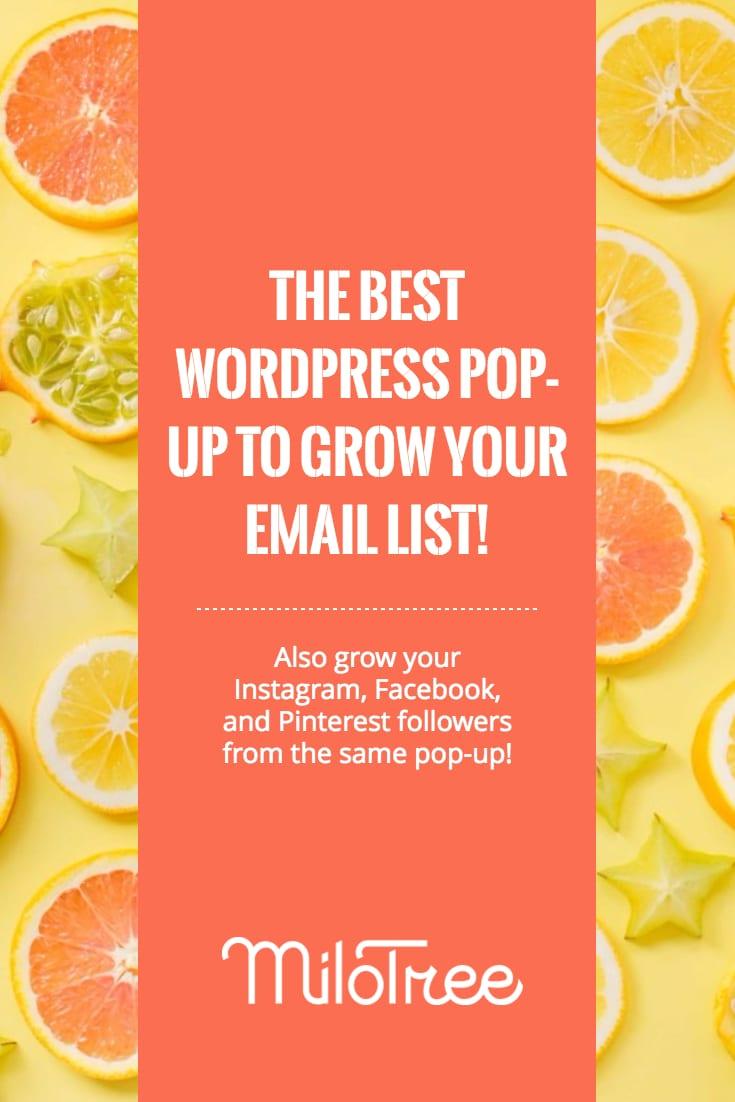 Best WordPress Plugin To Grow Your Email List   MiloTree.com