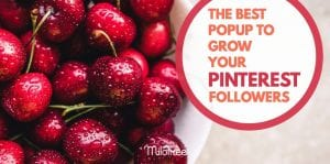 best-pinterest-popup-plugin-to-grow-your-follwers