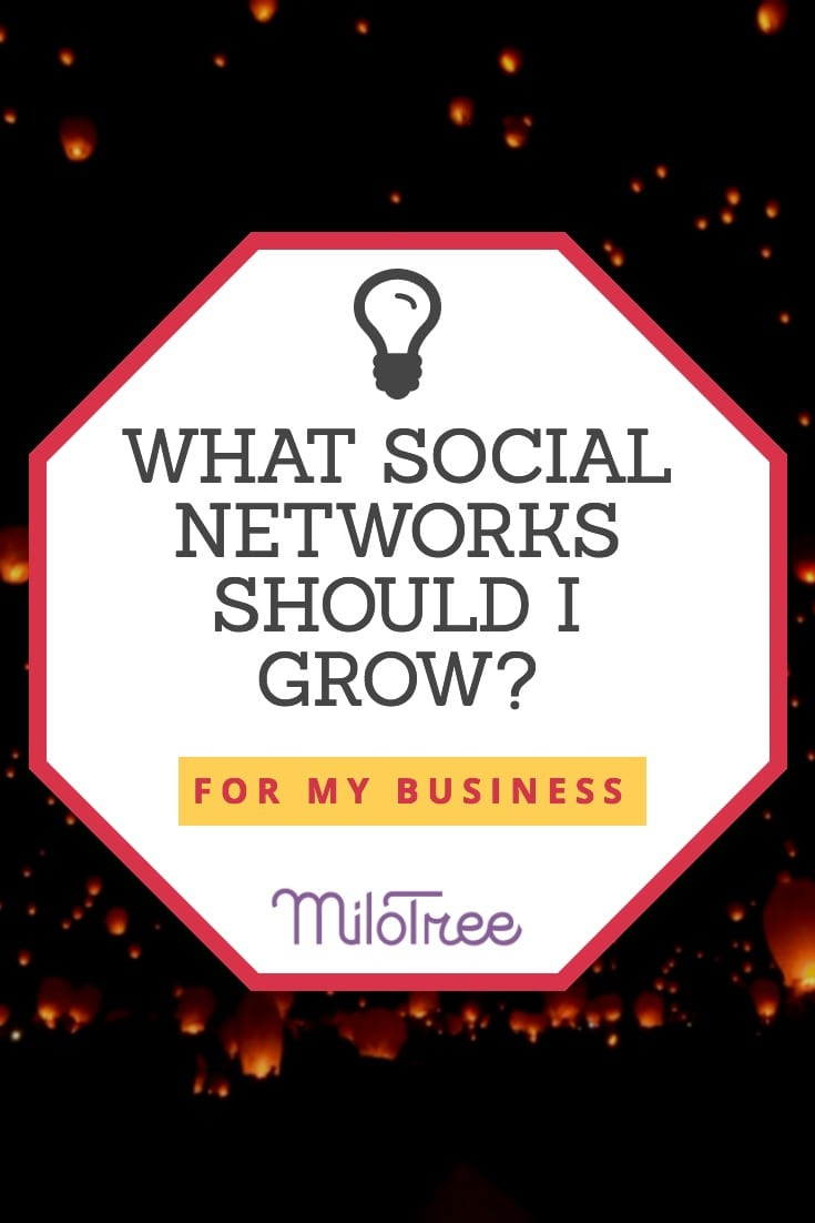 Instagram, Facebook, YouTube, Pinterest: What Social Networks Should I Grow? | MiloTree.com