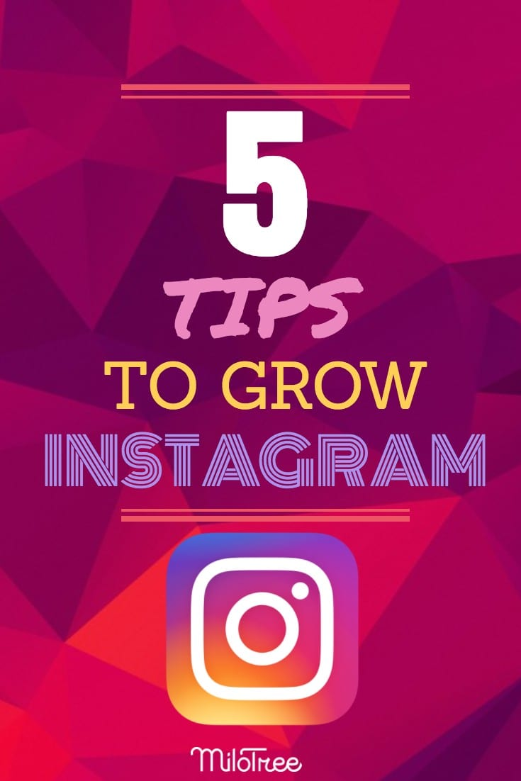 Free Instagram Followers Here is how to Get More Easily!   MiloTree.com