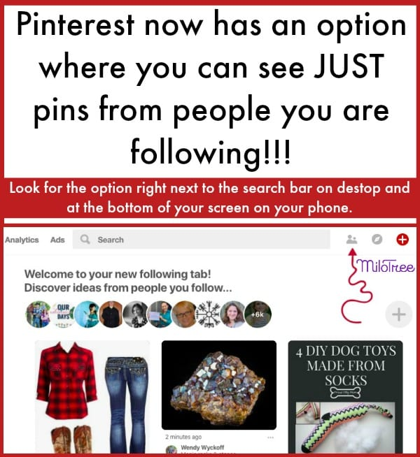 You can now use the New Pinterest Following Tab to see pins from only people you follow | MiloTree.com