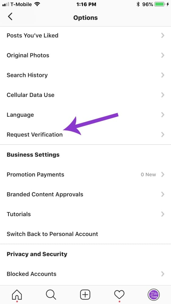 How to Request Verification on Instagram | MiloTree.com