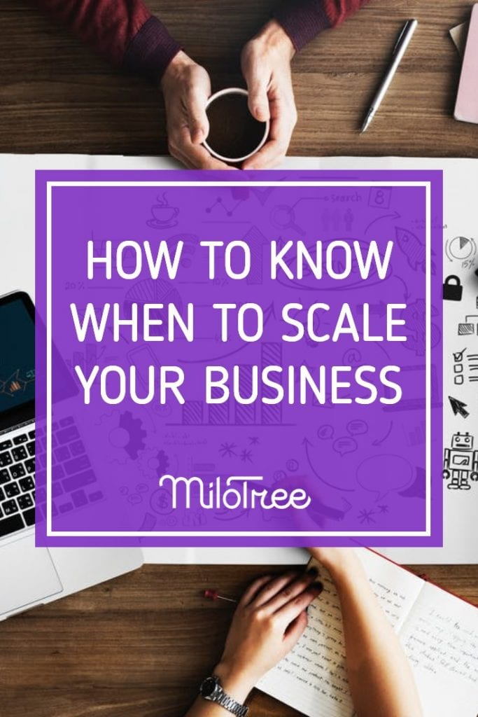 How to Know When To Scale Your Business | MiloTree.com